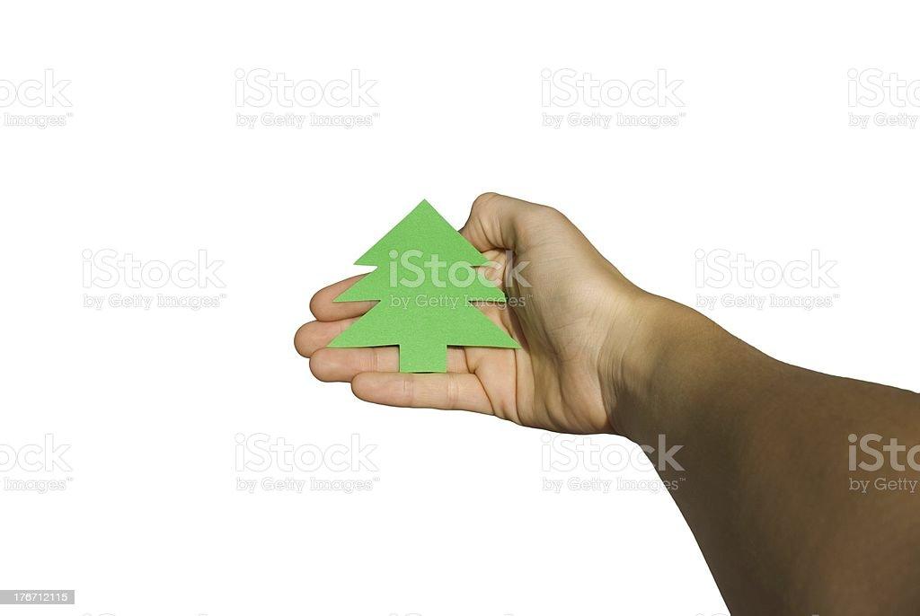 hand holds christmas tree banner stock photo