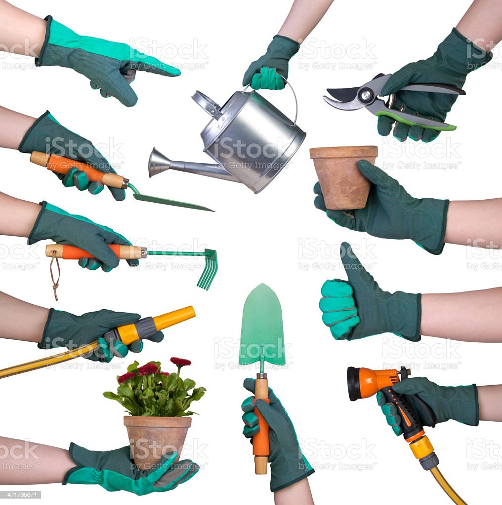 Hand in a glove holding gardening tools stock photo