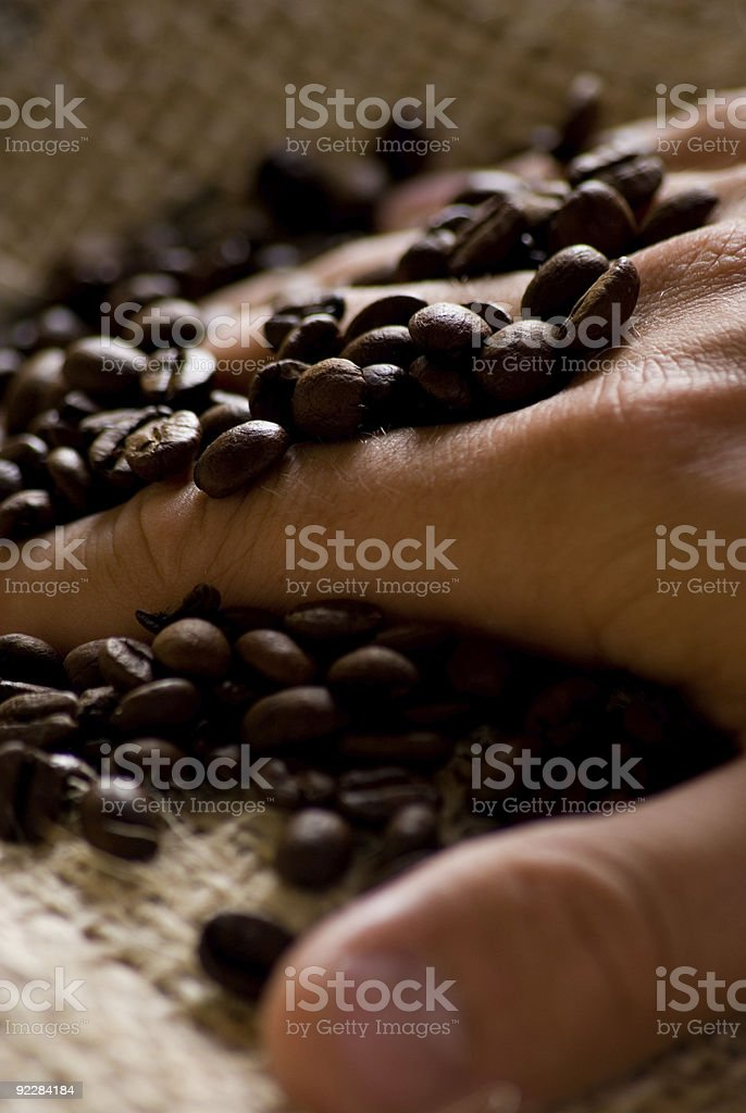 Hand in Coffee Beans royalty-free stock photo