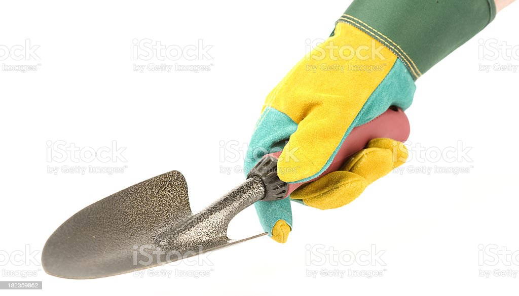 Hand in gardening glove with spade royalty-free stock photo