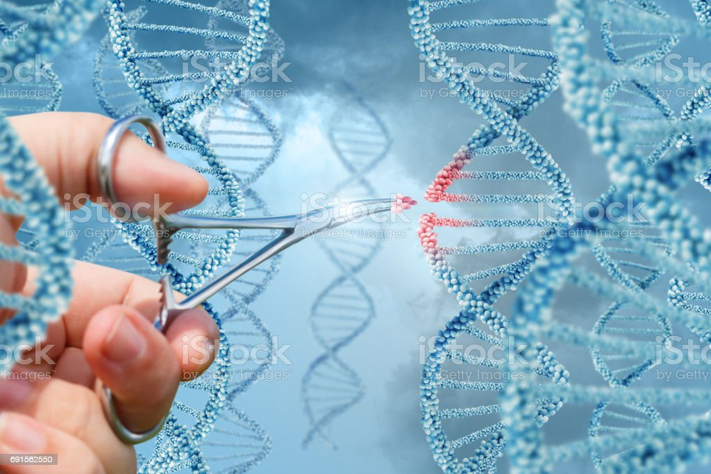Hand inserts a molecule into DNA. stock photo