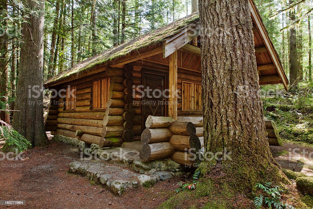 A hand made log cabin in the woods stock photo
