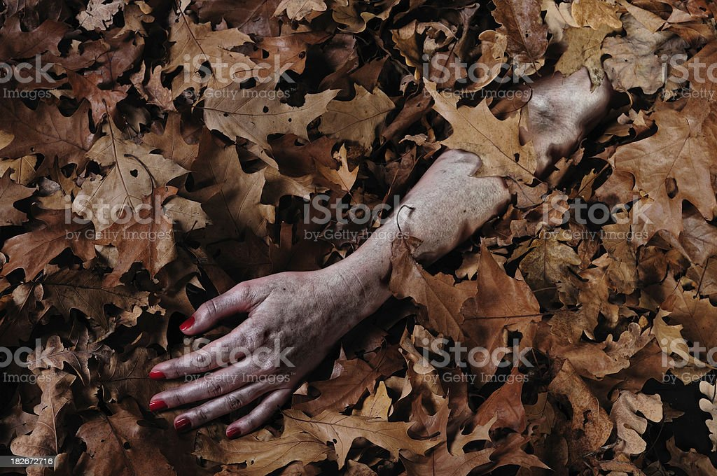 Hand of a victim covered with leaves in the forest stock photo