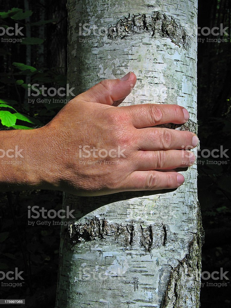 Hand Of A Witch royalty-free stock photo