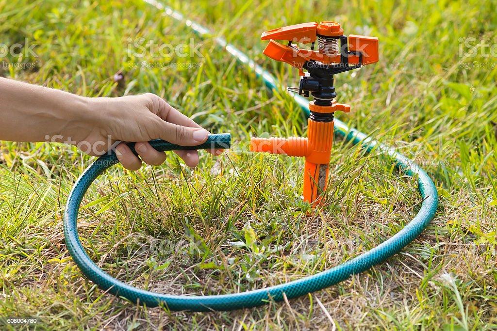 hand of gardener installing sprinkler for irrigation of lawn stock photo