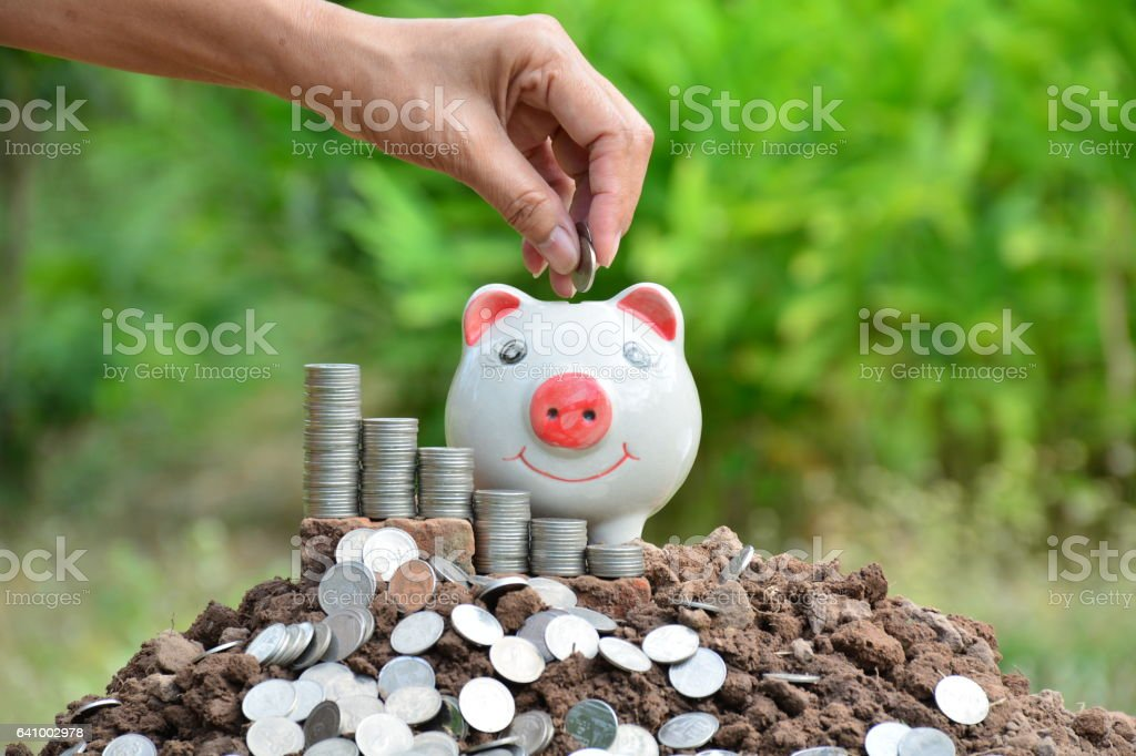 Hand of people holding coin and drop into piggy bank stock photo
