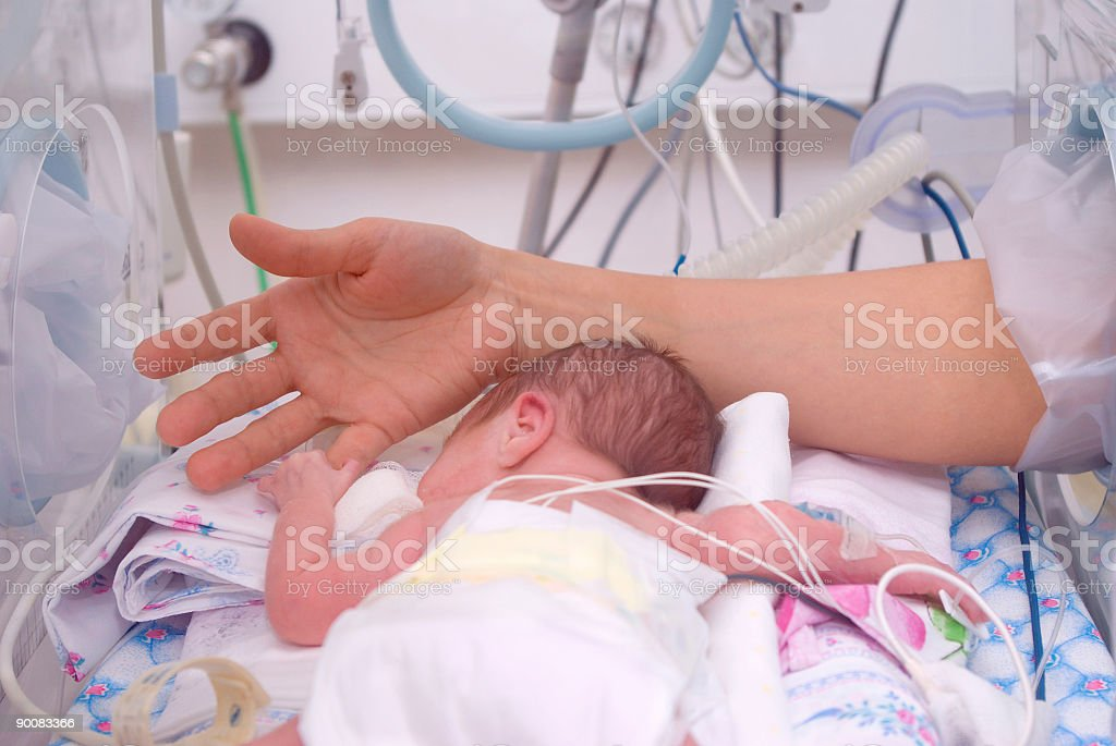 Hand of the physician and newborn in incubator stock photo