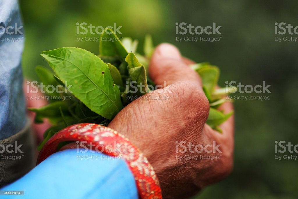 Hand of the time and weather stock photo