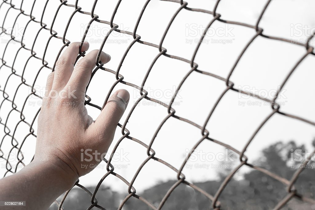 hand on chain-link fence stock photo