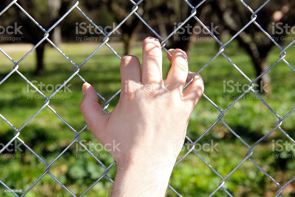 Hand on the Fence stock photo