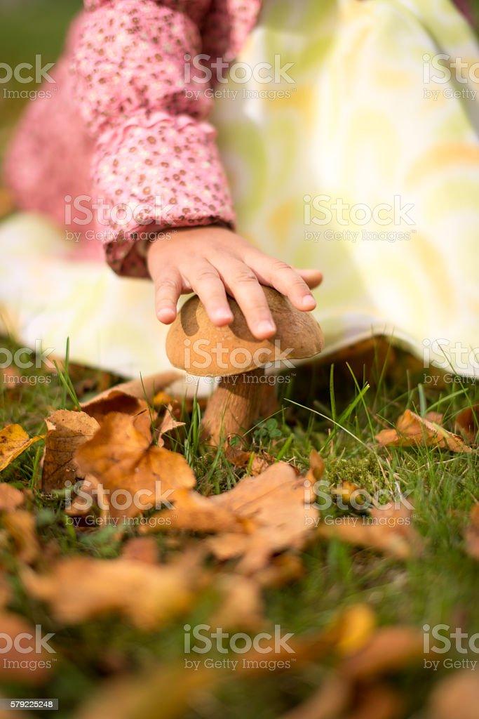 Hand over mushroom stock photo