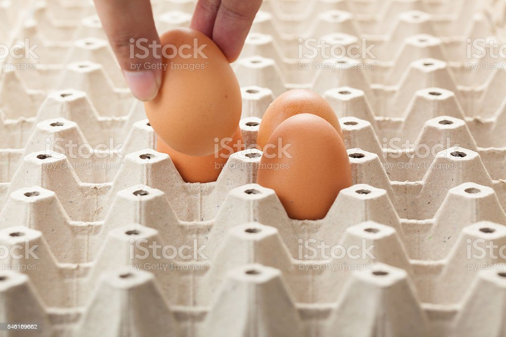 hand picking an egg from egg tray. stock photo