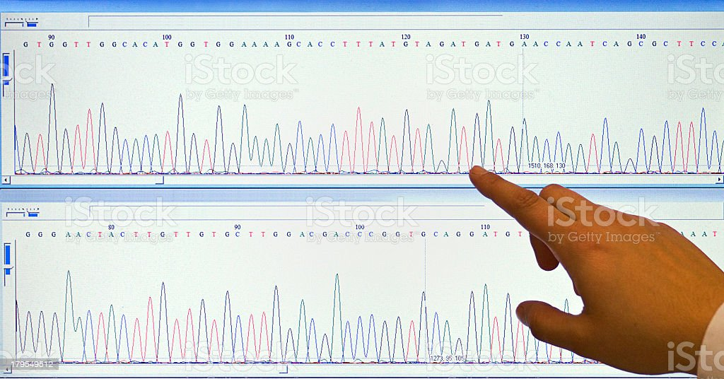 Hand pointing at a position on DNA sequencing chromatogram stock photo