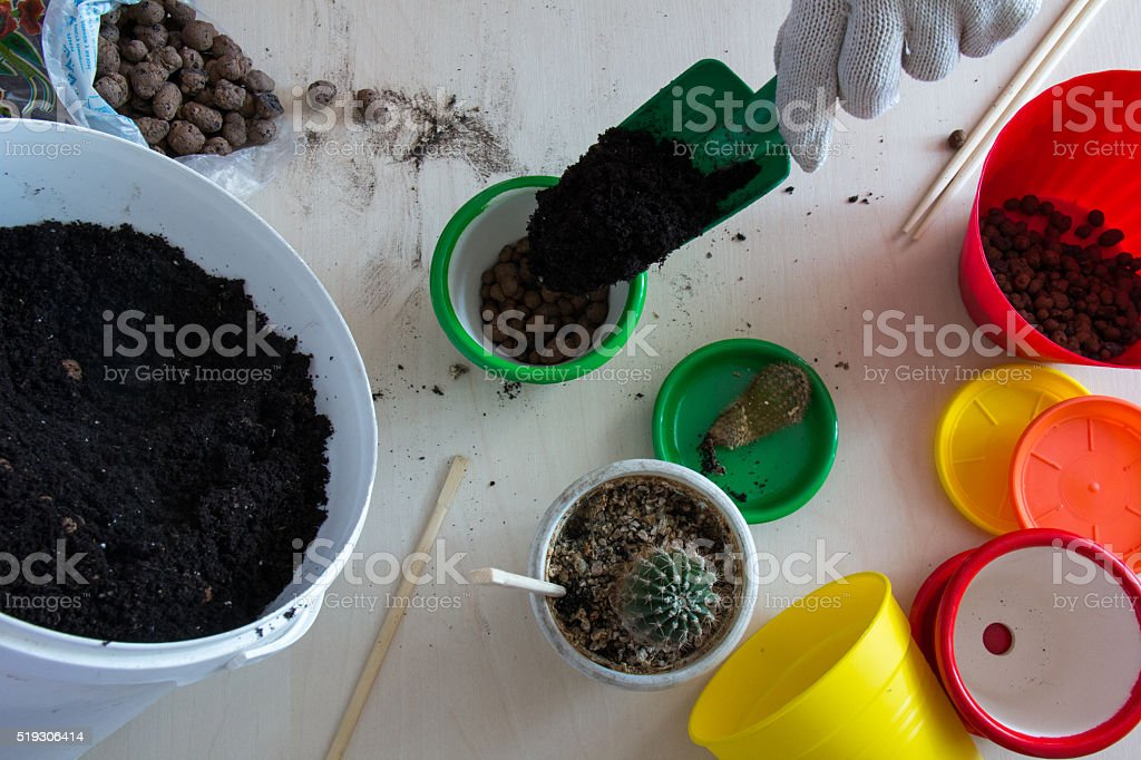 Hand pours the ground in a pot top view stock photo