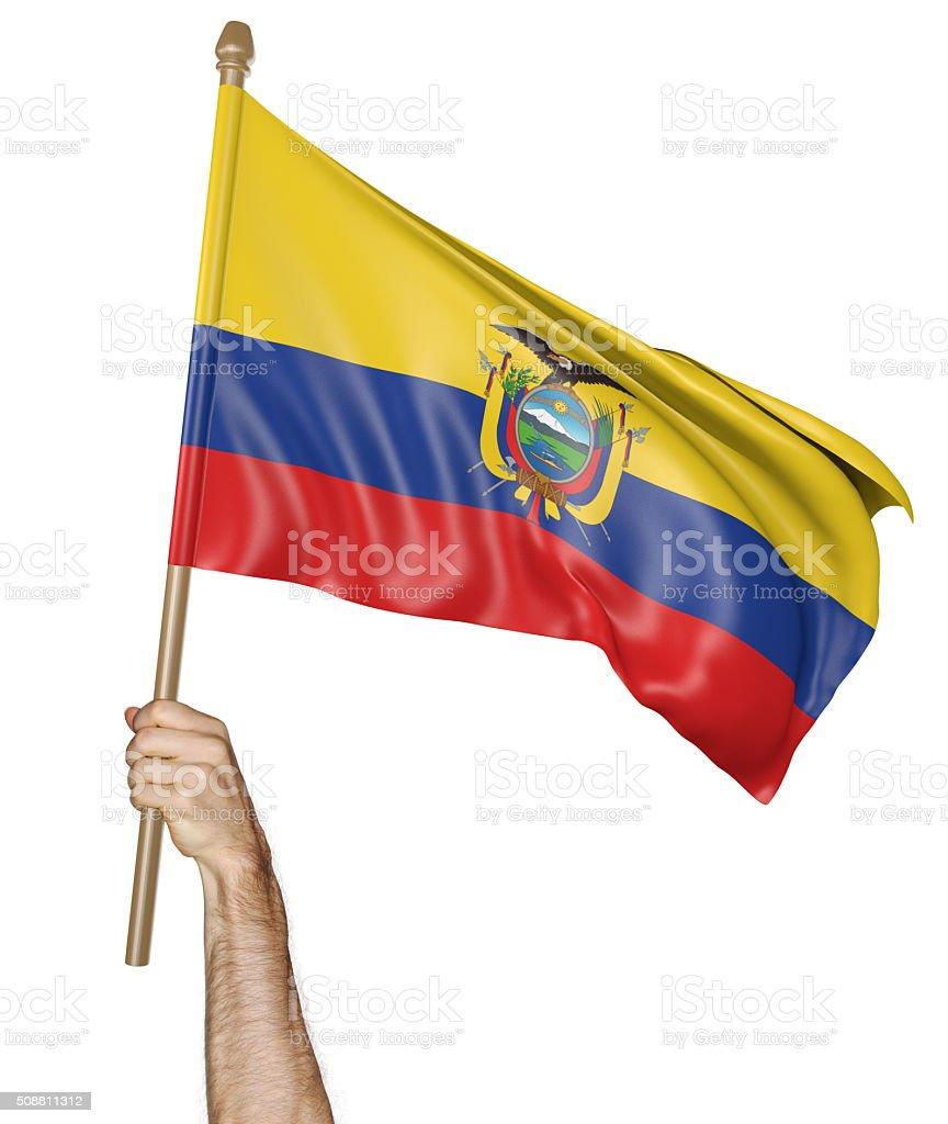 Hand proudly waving the national flag of Ecuador stock photo