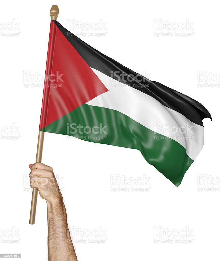Hand proudly waving the national flag of Palestine stock photo