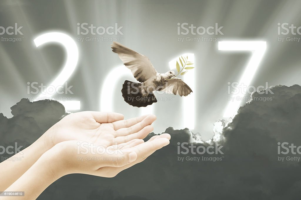 Hand releasing a bird into the air on sky 2017 stock photo