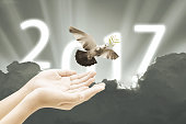 Hand releasing a bird into the air on sky 2017