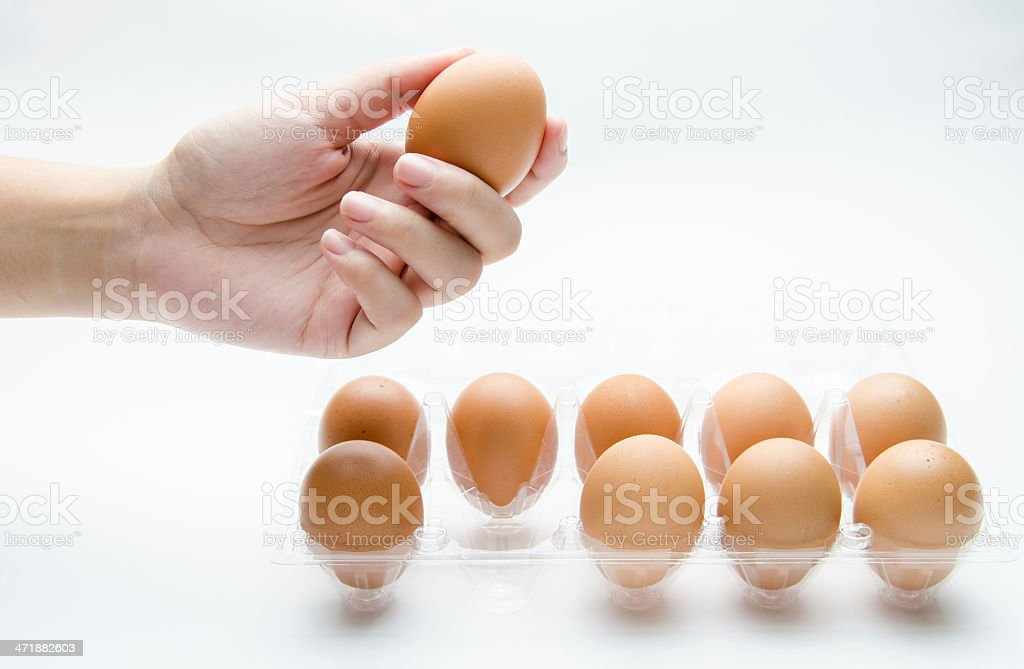 Hand select an eggs for life royalty-free stock photo