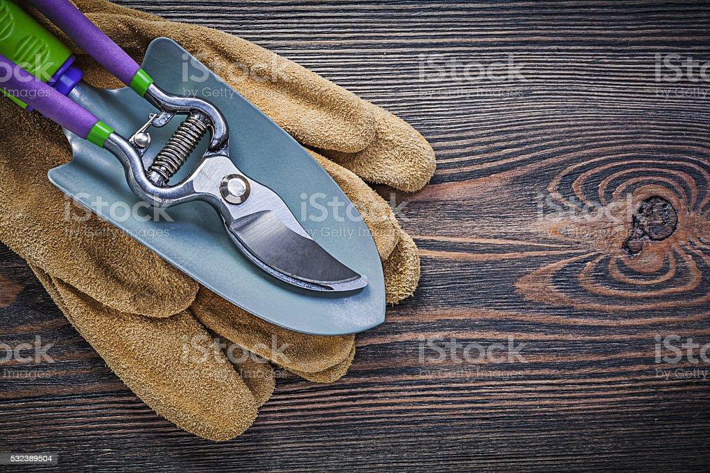 Hand spade garden pruner protective gloves on wooden board garde stock photo