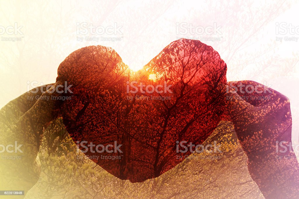 hand take red heart in sunset twilight colour and tree stock photo
