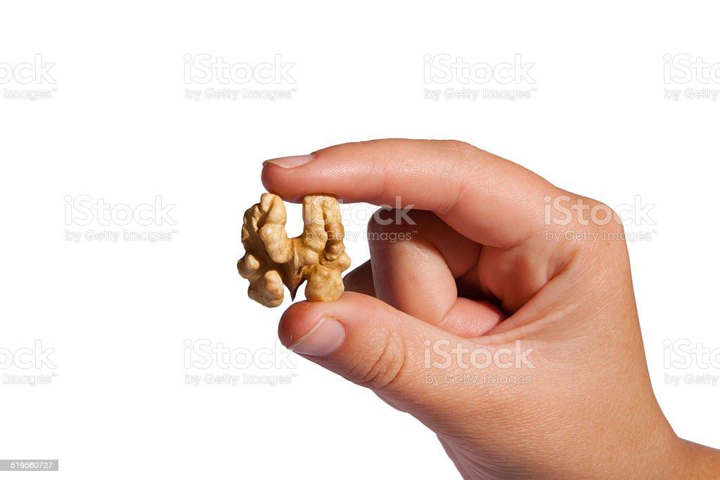 Hand take walnut stock photo