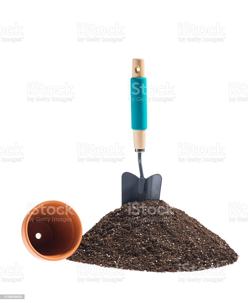 Hand trowel sticking out of potting mix with clay pot stock photo