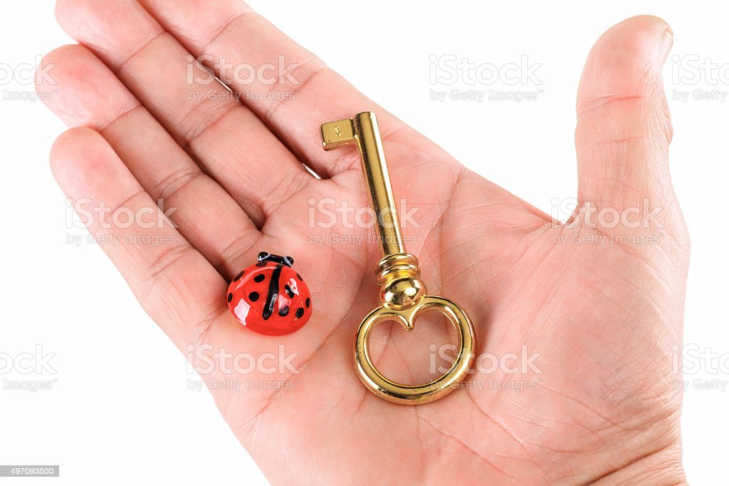 Hand with a golden key and ladybug stock photo