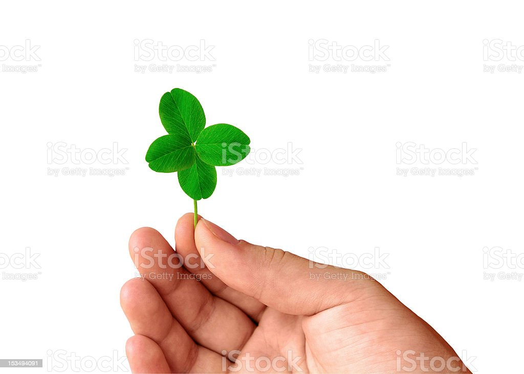 Hand with clover royalty-free stock photo