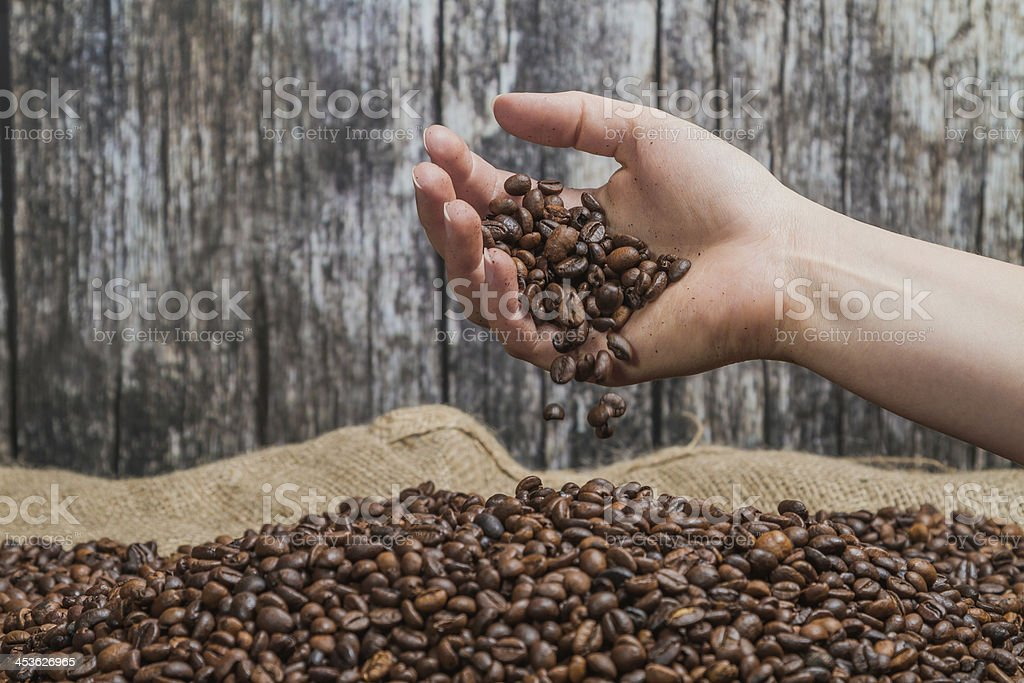 Hand with coffee beans stock photo