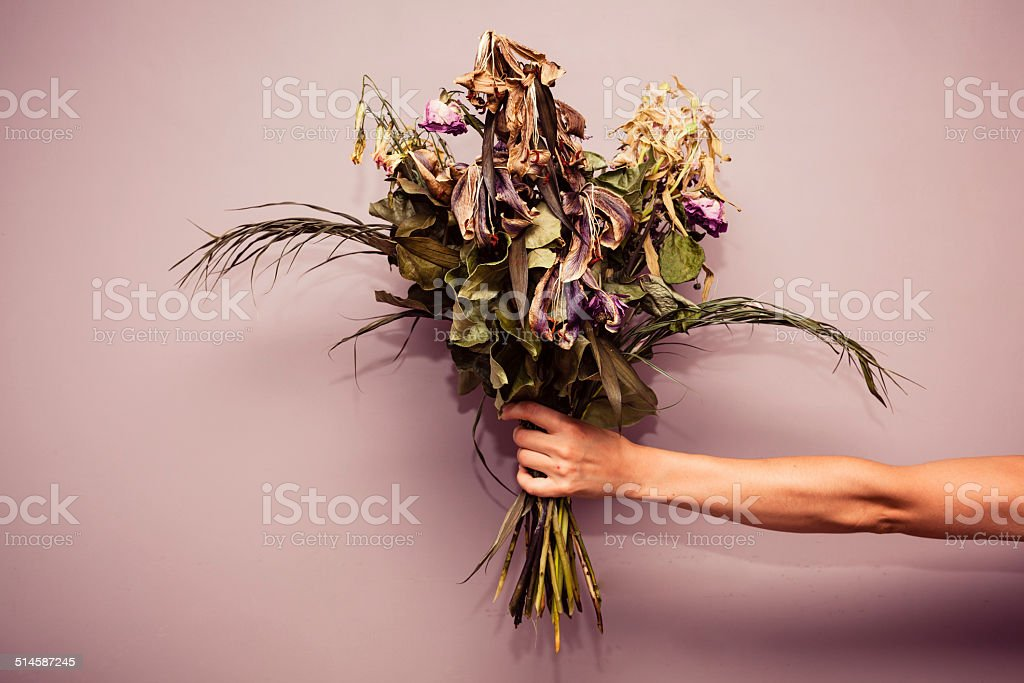 Hand with dead flowers stock photo