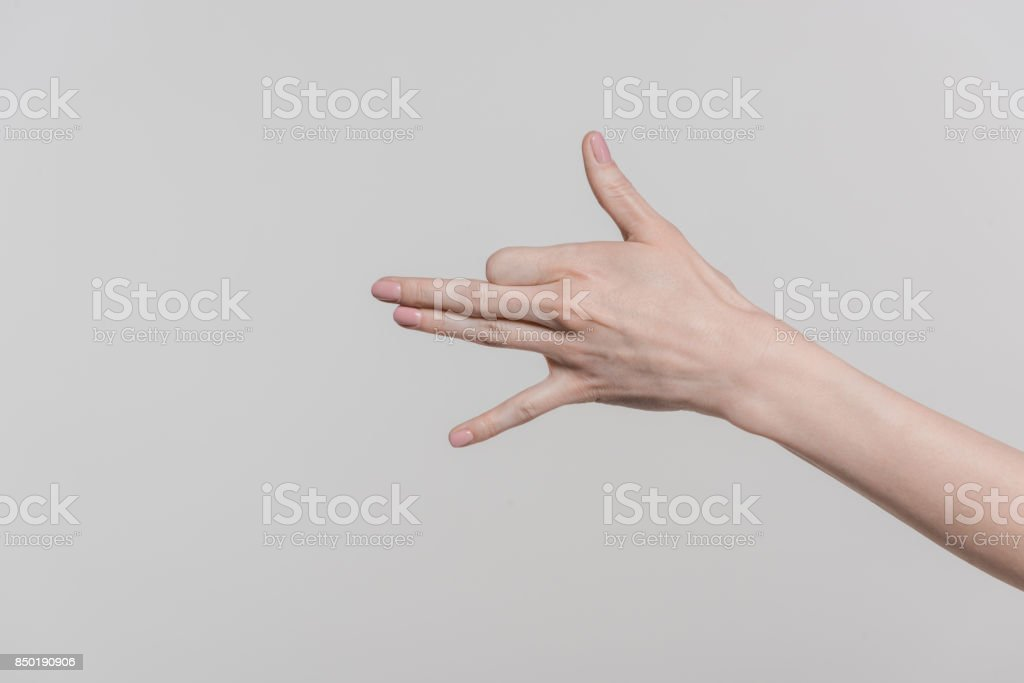 hand with dog gesture stock photo