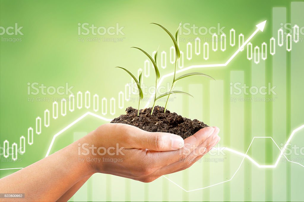 Hand with tree and finance concept stock photo
