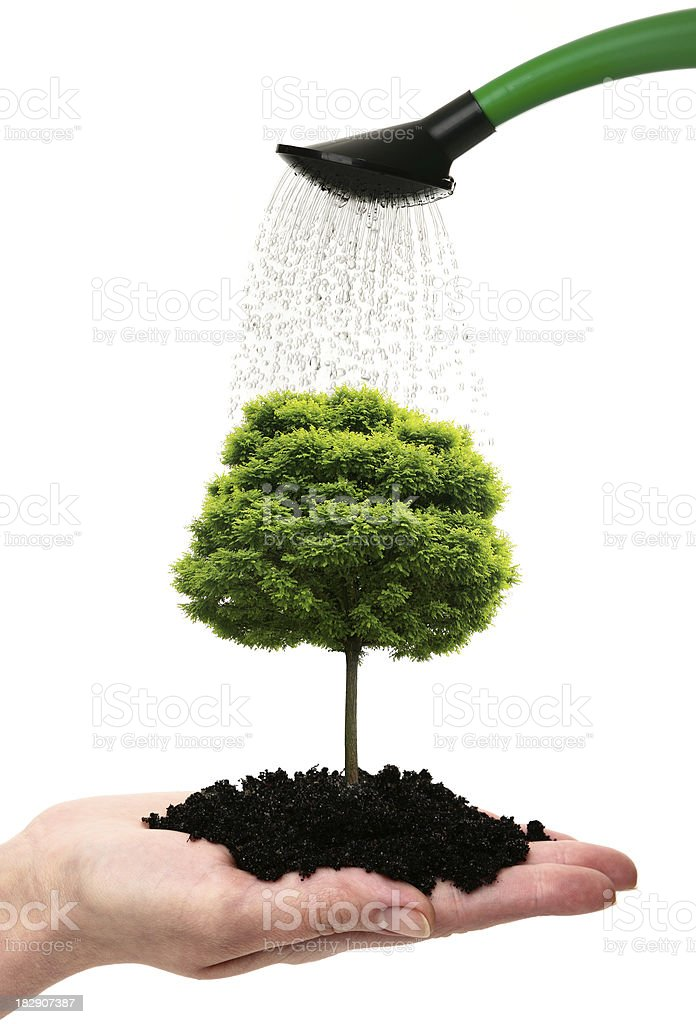 Hand with tree royalty-free stock photo