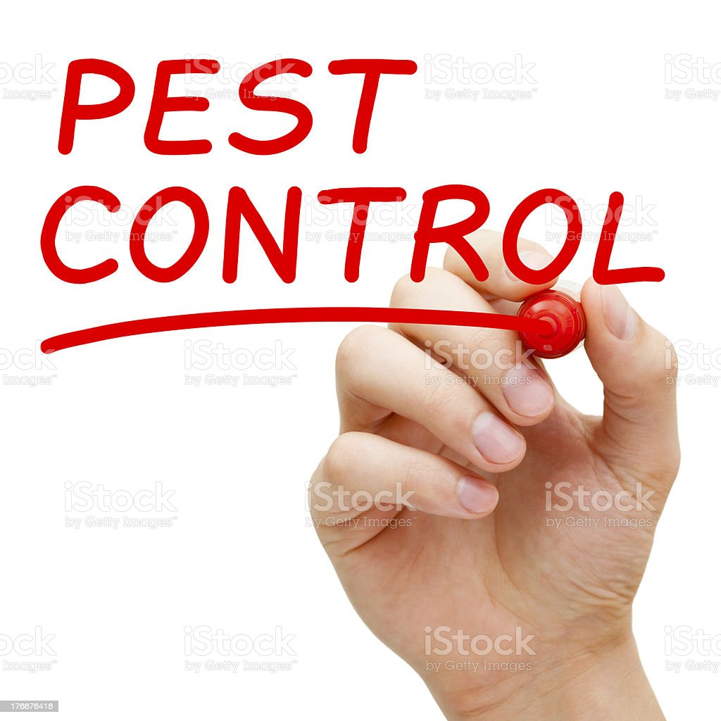 Hand writing pest control in red marker stock photo