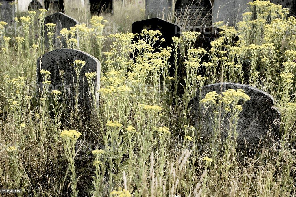 Hand-coloured Gravestones stock photo