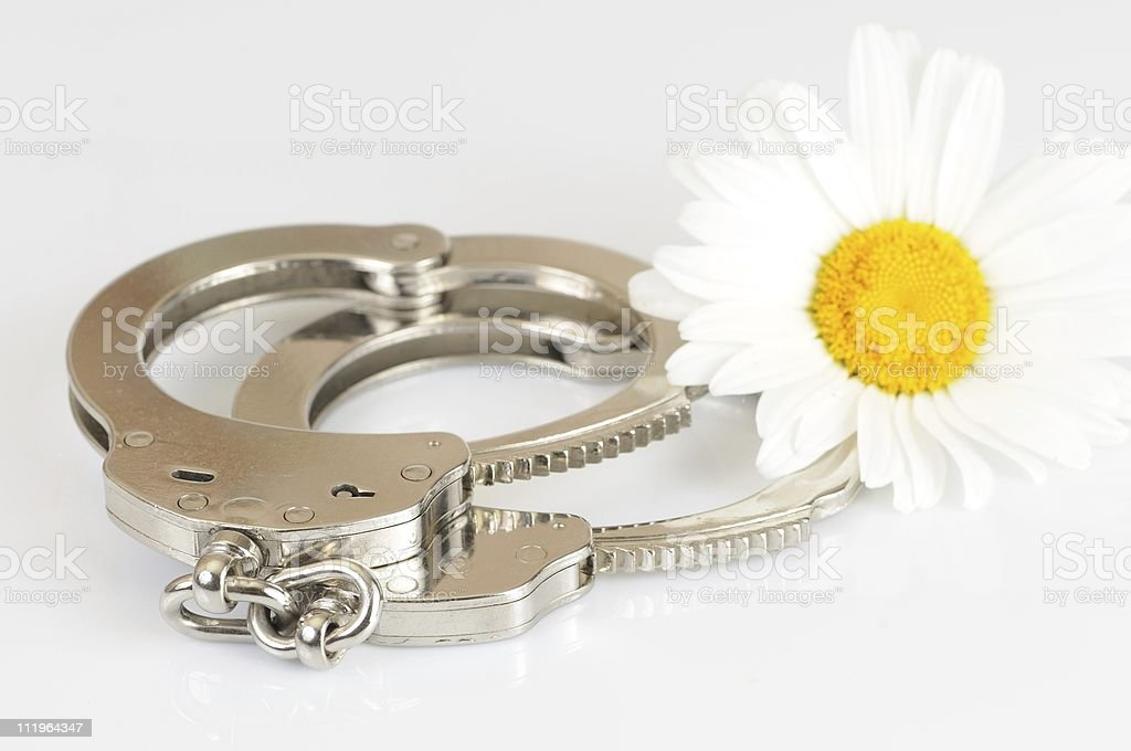 Handcuffs and flower royalty-free stock photo
