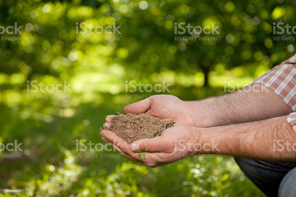 Handful Dirt royalty-free stock photo