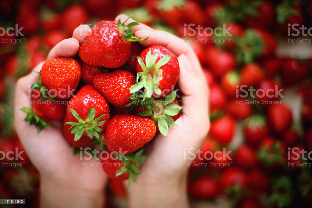 Handful of fresh strawberries. stock photo