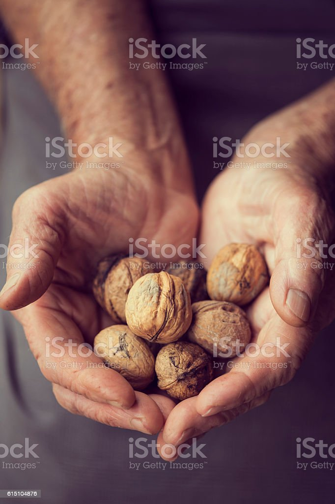 Handful of nuts stock photo