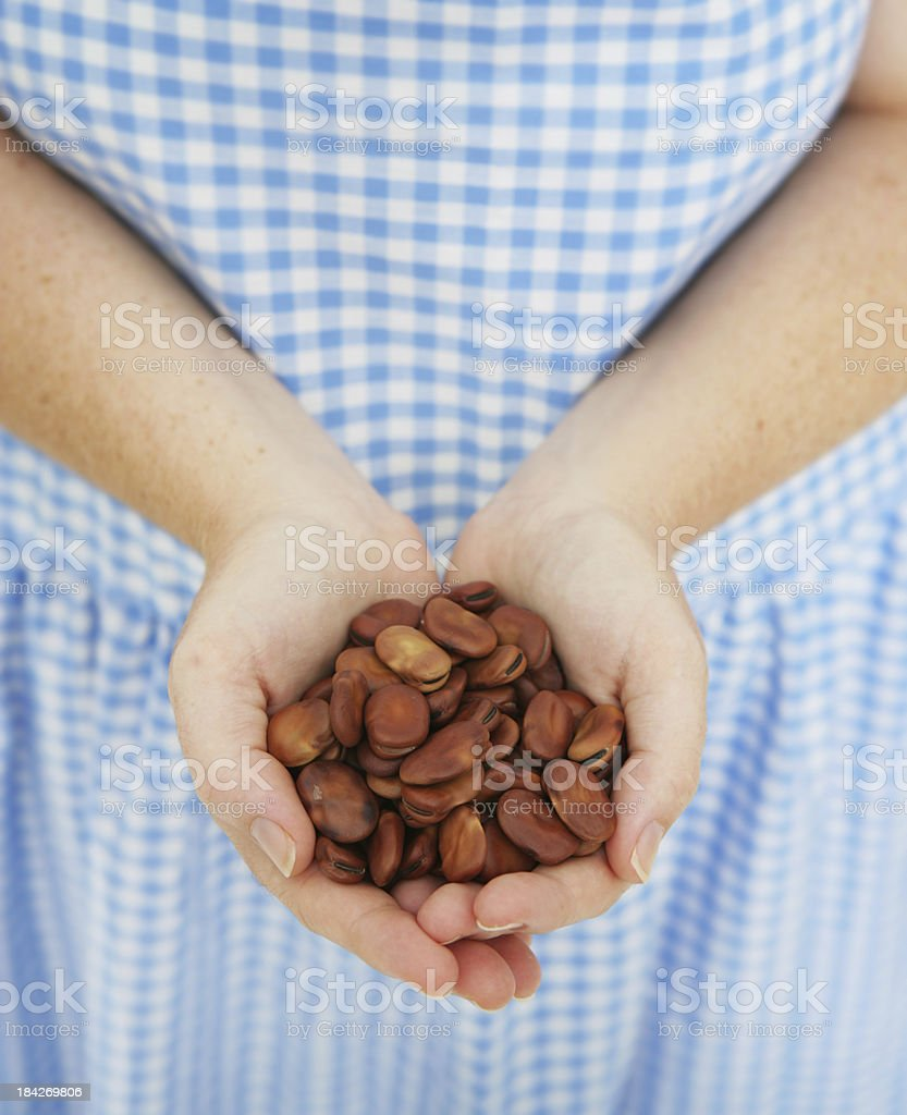 Handful of Seeds stock photo