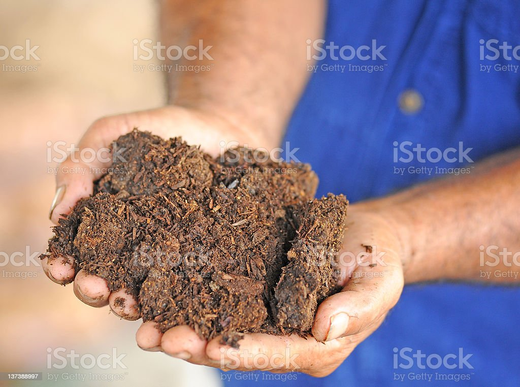 Handful of soil royalty-free stock photo