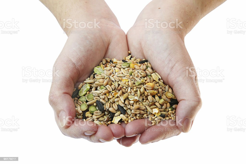 Handful of various seeds on my background royalty-free stock photo