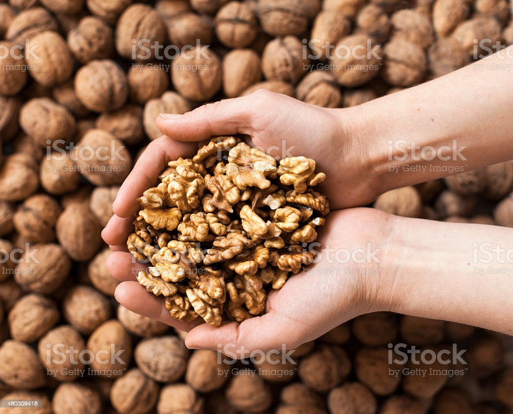 Handful of walnuts kernels stock photo