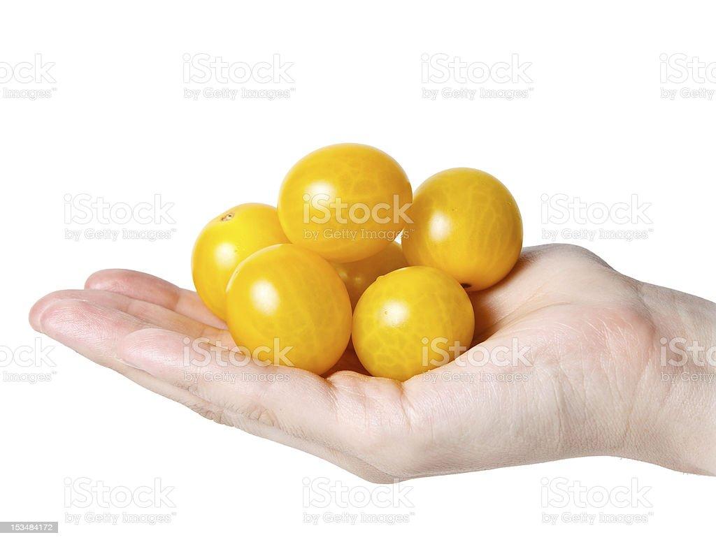 handful of  yellow tomatos stock photo