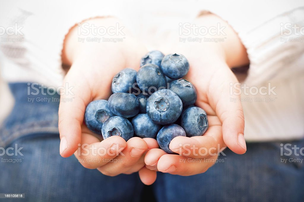 handfull of blueberries royalty-free stock photo