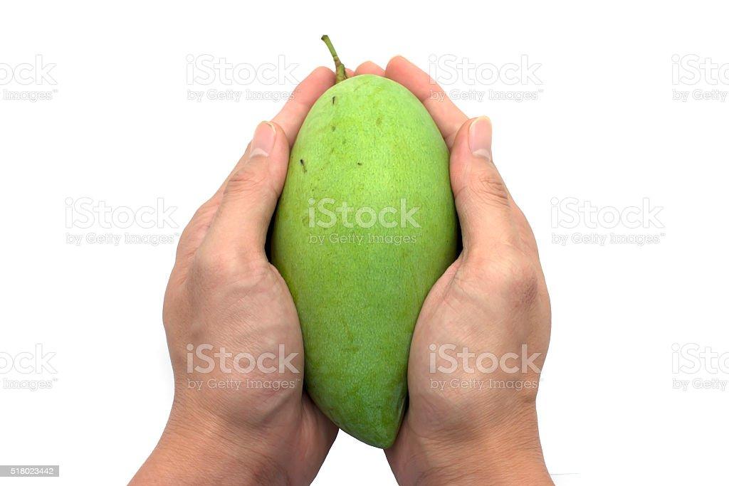 Handfuls of Mango Fruit stock photo