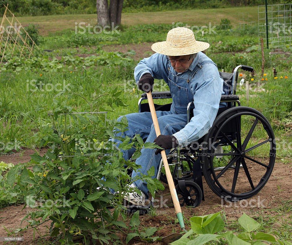 handicapped farmer royalty-free stock photo