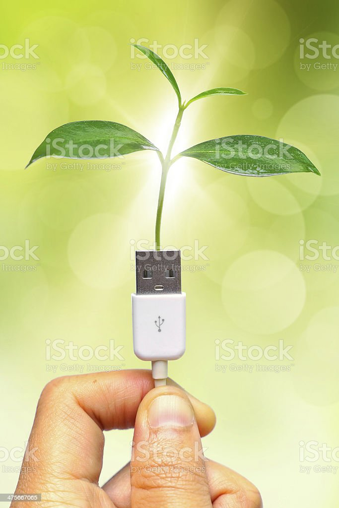 handing holding tree growing on usb cable royalty-free stock photo