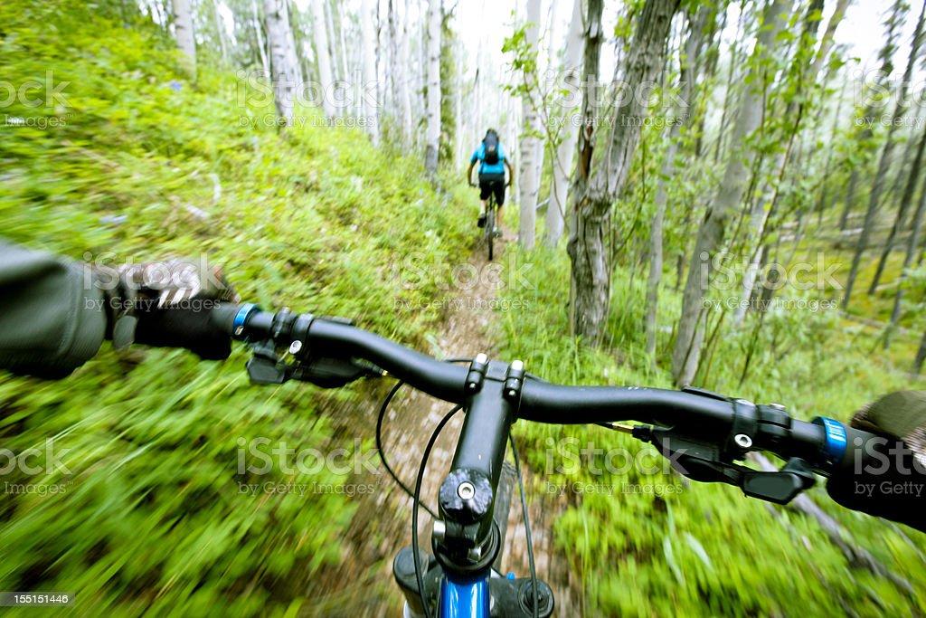 Handlebars of mountain bike speeding through forest royalty-free stock photo